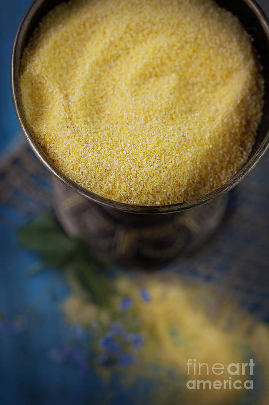 Crop Art Print featuring the photograph Fresh Corn Meal by Mythja Photography