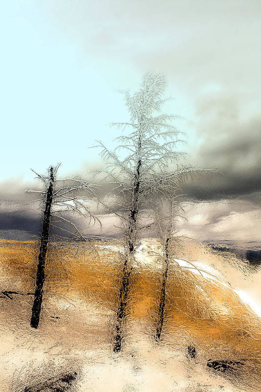 Forest Art Print featuring the photograph Frozen Time II by Isartdesign By Isabella Schnittger