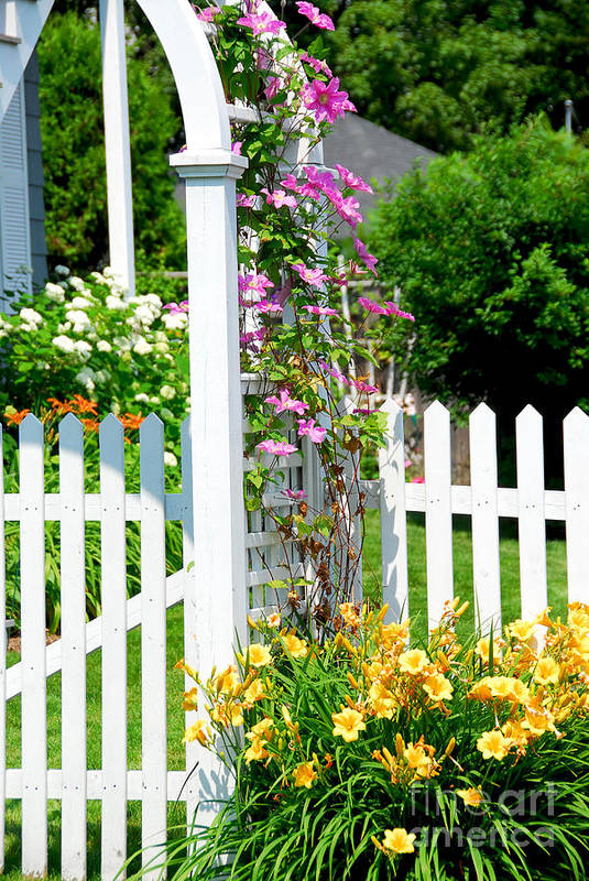 House Art Print featuring the photograph Garden With Picket Fence by Elena Elisseeva