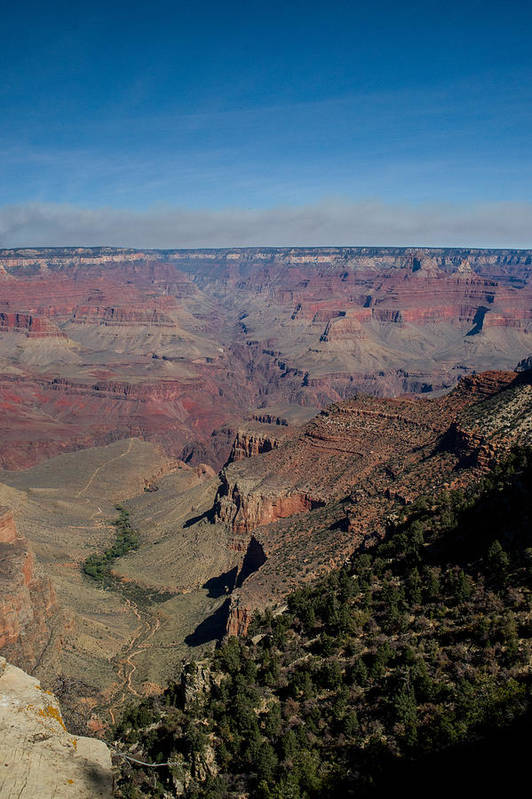 Grand Art Print featuring the photograph Grande Canyon Afternoon by Douglas Barnett