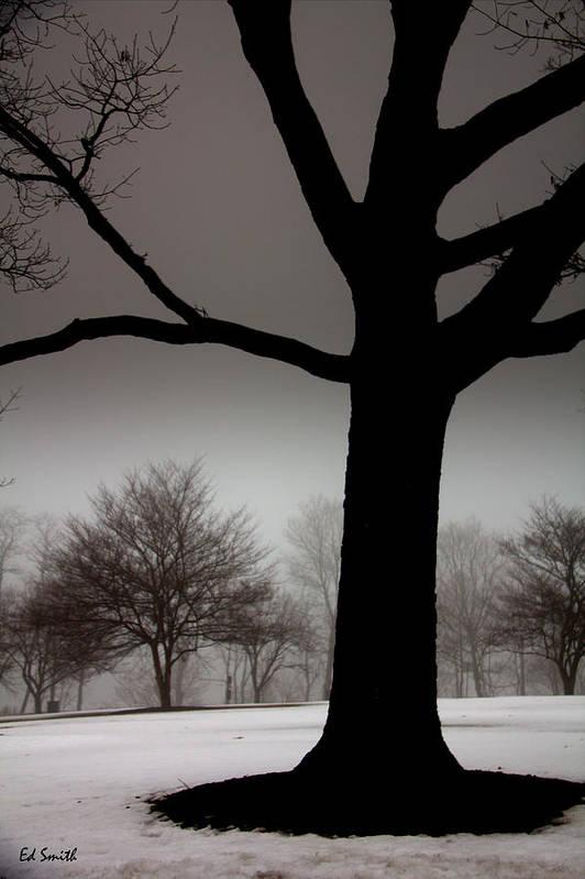 Gray Skies At Night Art Print featuring the photograph Gray Skies At Night by Ed Smith
