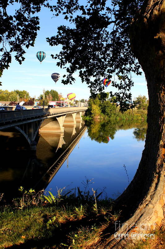 Prosser Print featuring the photograph Hot Air Balloons Through Tree by Carol Groenen