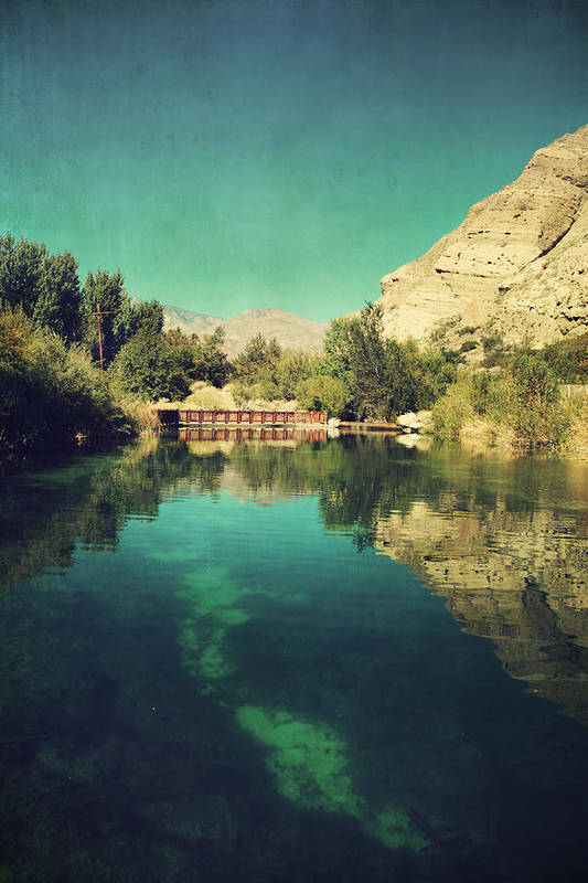 Whitewater Preserve Art Print featuring the photograph I See Right Through by Laurie Search