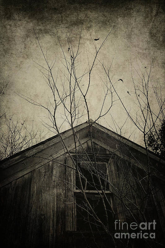 House Art Print featuring the photograph Into The Dark Past by Trish Mistric