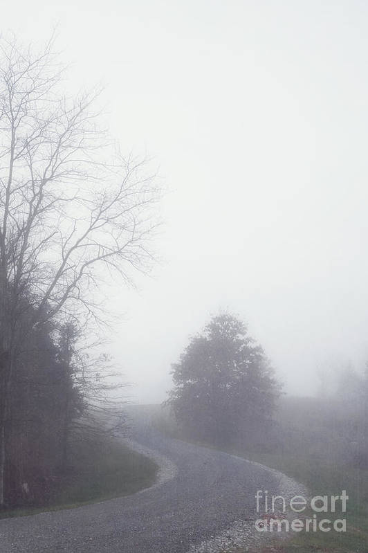 Fog Art Print featuring the photograph Into The Fog by Kay Pickens