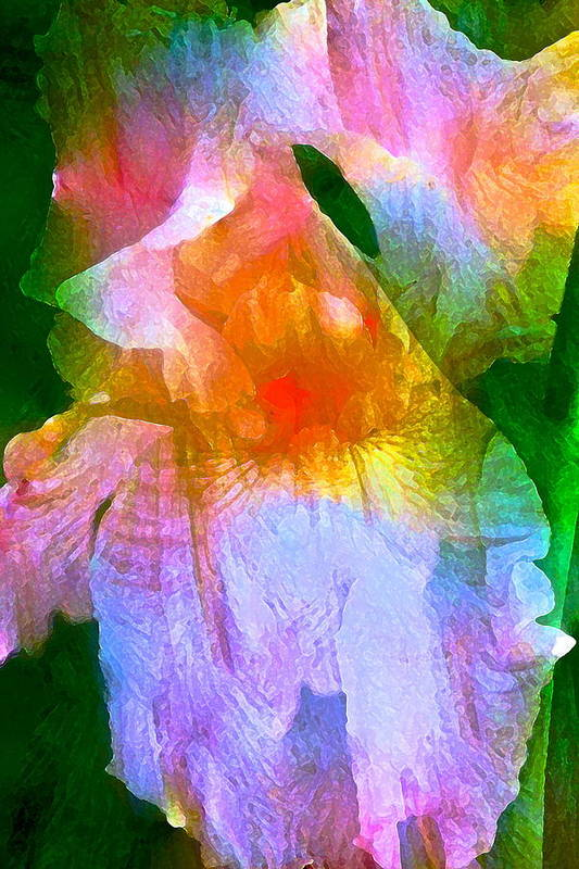 Floral Art Print featuring the photograph Iris 53 by Pamela Cooper
