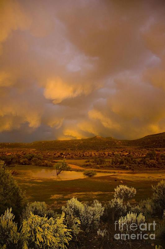 Sunset Art Print featuring the photograph La Boca Rain by Jerry McElroy