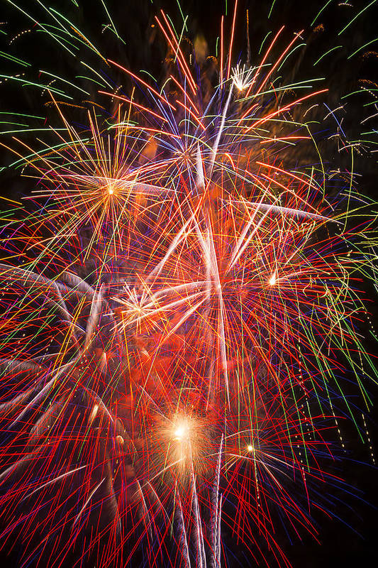 Fawesome Fireworks Lights Up The Darkness Art Print featuring the photograph Let Us Celebrate by Garry Gay