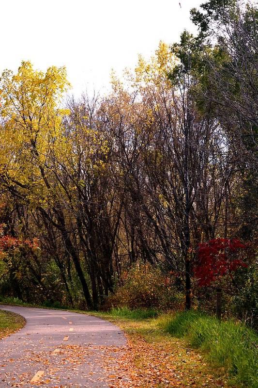 Autumn Art Print featuring the photograph Let's Take A Bike Ride by Karen Majkrzak