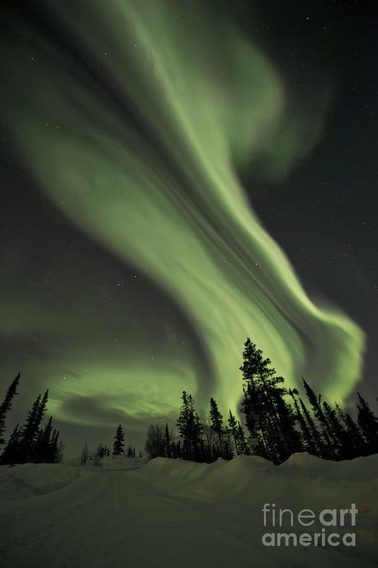 Aurora Borealis Art Print featuring the photograph Light Swirls Over The Midnight Dome by Priska Wettstein