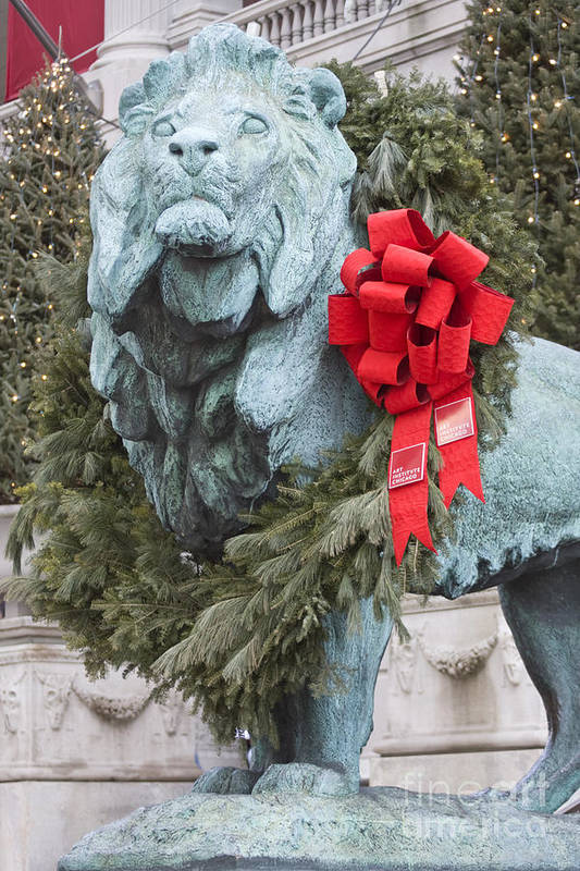 Art Institute Art Print featuring the photograph Lion In Winter by Patty Colabuono