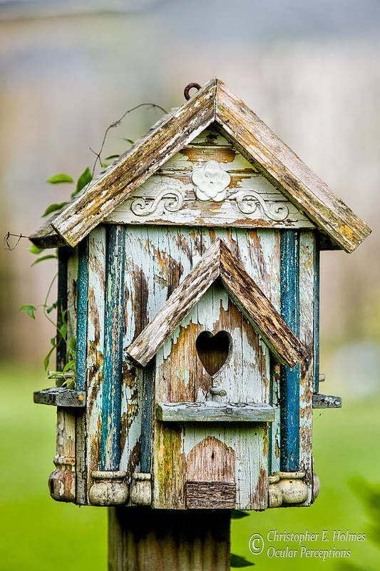 Birdhouse Art Print featuring the photograph Little Birdhouse by Christopher Holmes