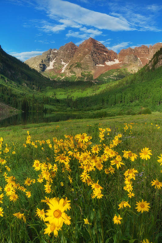 Colorado Landscapes Art Print featuring the photograph Maroon Summer by Darren White
