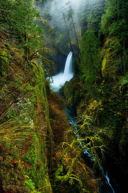 Lush Print featuring the photograph Metlako Falls by Darren White
