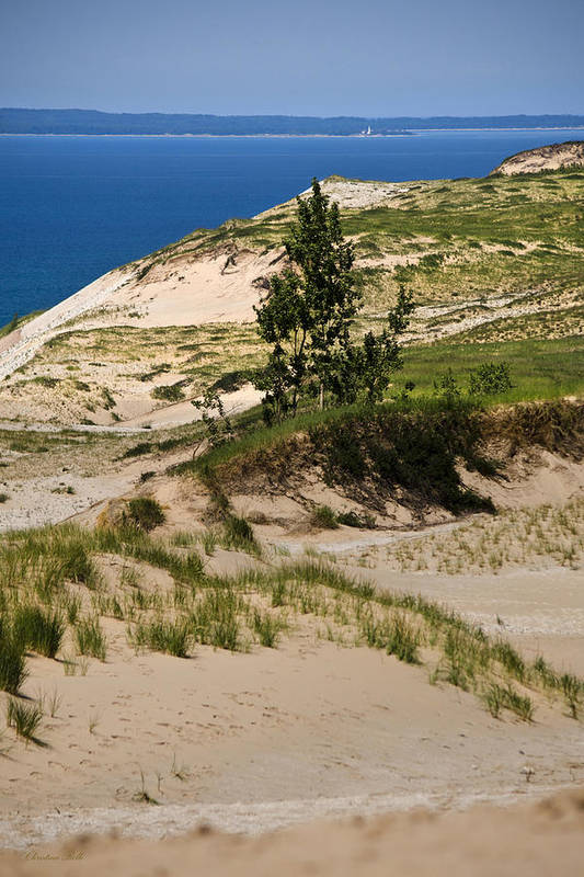 Michigan Art Print featuring the photograph Michigan Sleeping Bear Dunes by Christina Rollo
