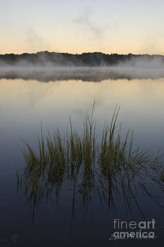 Morning Print featuring the photograph Morning Mist At Sunrise by David Gordon