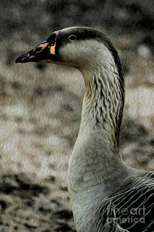 Duck Art Print featuring the digital art My Good Side by Kenneth Montgomery