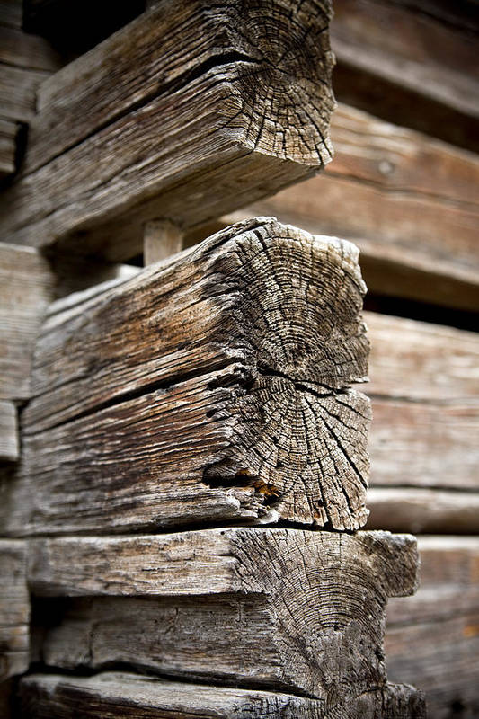 Old Wood Art Print featuring the photograph Old Wood by Frank Tschakert