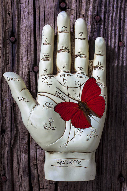 Palm Reader Hand Art Print featuring the photograph Palm Reading Hand And Butterfly by Garry Gay