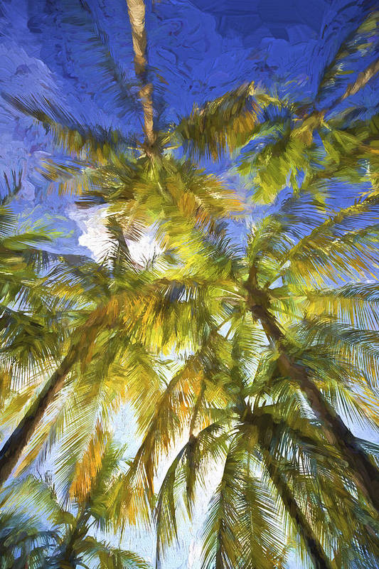 Abstract Art Print featuring the painting Palm Trees Of Aruba by David Letts