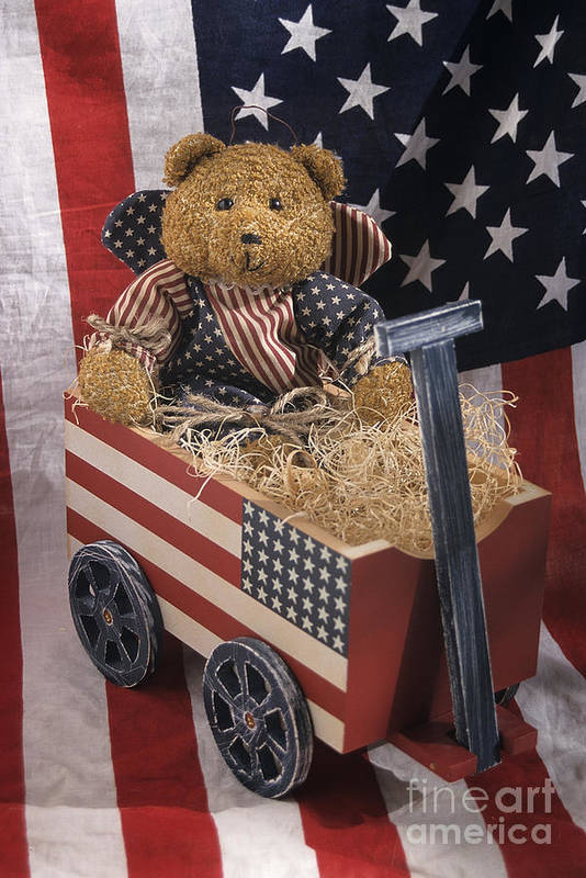United States Art Print featuring the photograph Patriot Bear by Sharon Elliott