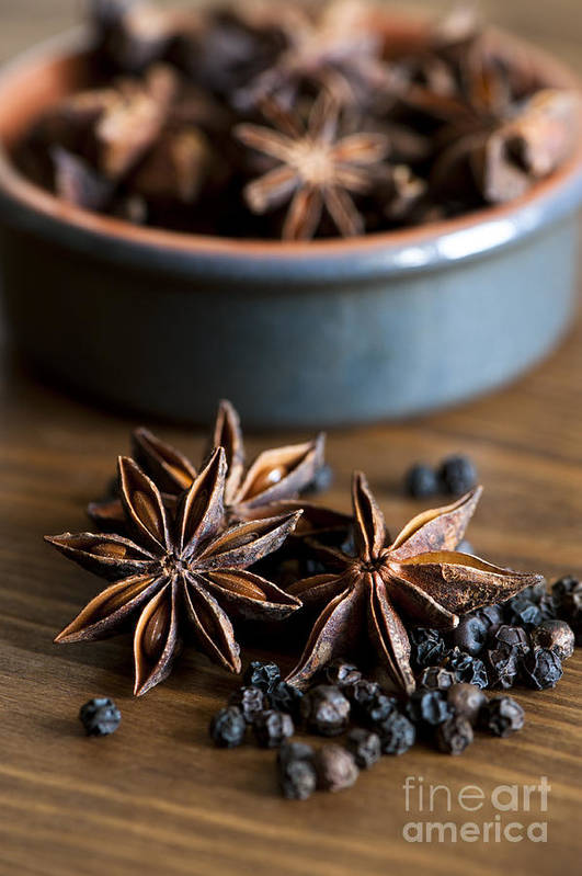Anise Art Print featuring the photograph Pepper And Spice by Anne Gilbert