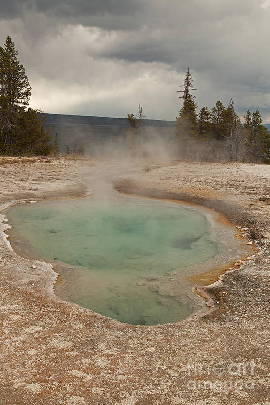 Afternoon Art Print featuring the photograph Perforated Pool In West Thumb Geyser Basin by Fred Stearns
