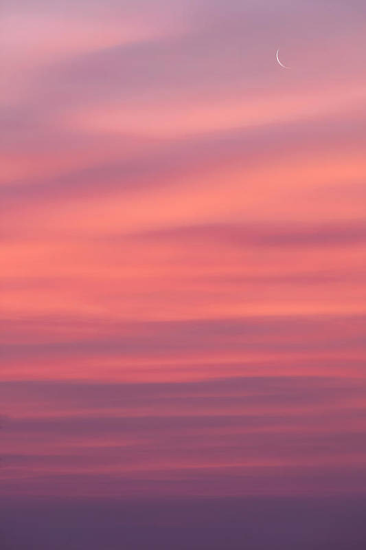 Sunrise Print featuring the photograph Pink Moon by Bill Wakeley