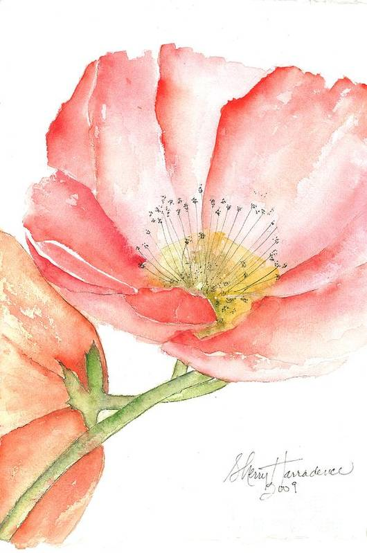 Owl Print featuring the painting Poppy Bloom by Sherry Harradence