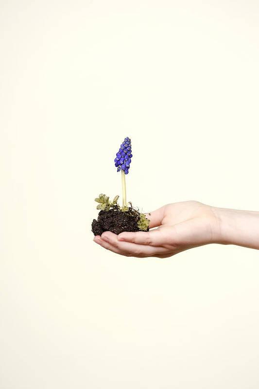 Girl Art Print featuring the photograph Purple Flower by Joana Kruse