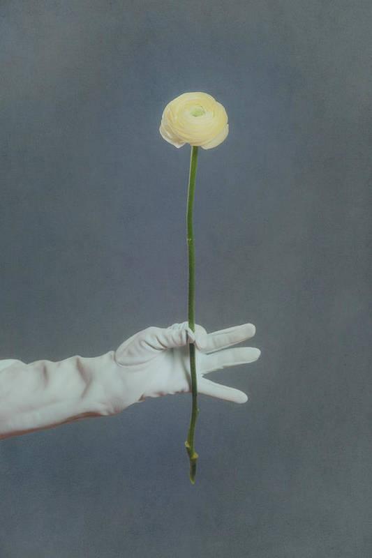 Flower Print featuring the photograph Ranunculus by Joana Kruse