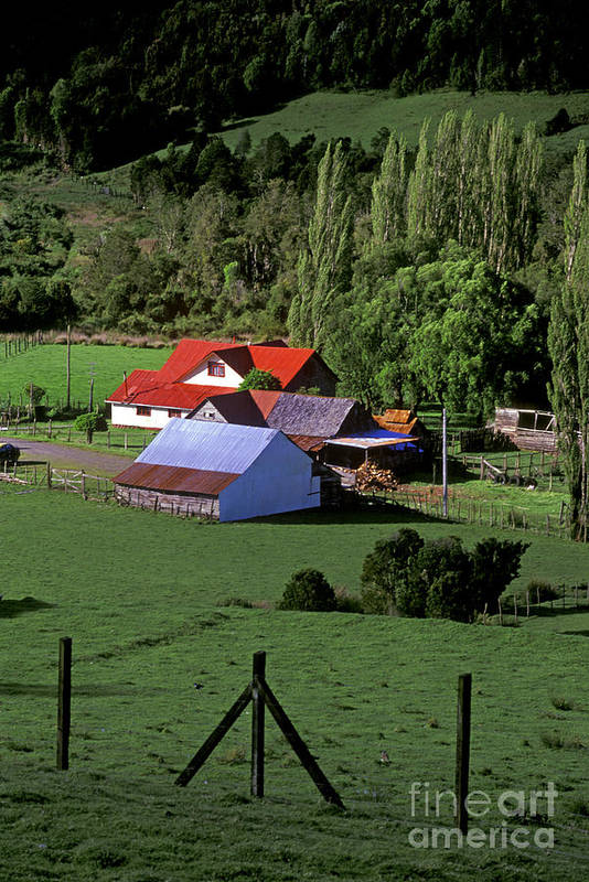 Island Art Print featuring the photograph Red Roofed Barn Chiloe Island by Craig Lovell