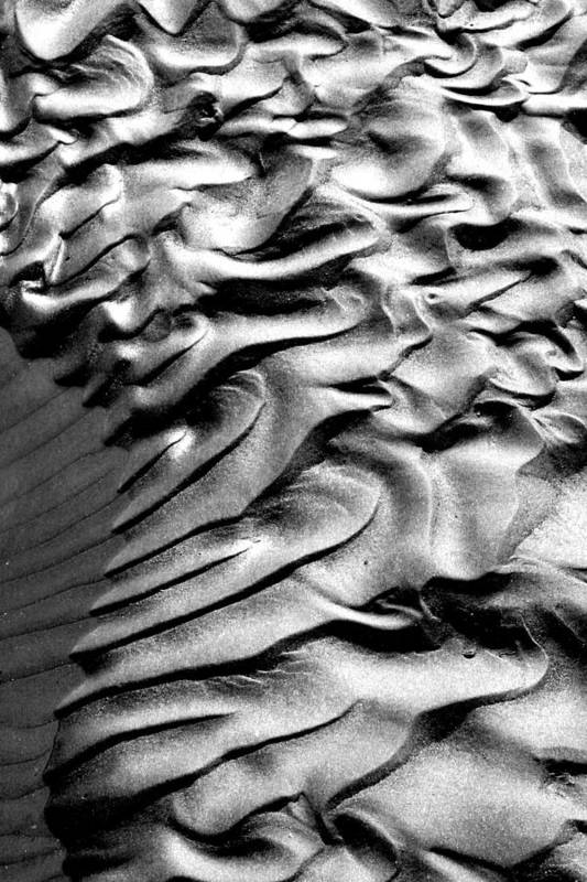 Ripples Art Print featuring the photograph Ripples 1 by Robert Woodward