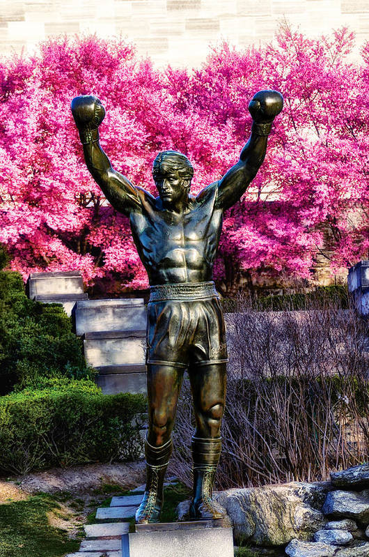 Rocky Art Print featuring the photograph Rocky Among The Cherry Blossoms by Bill Cannon