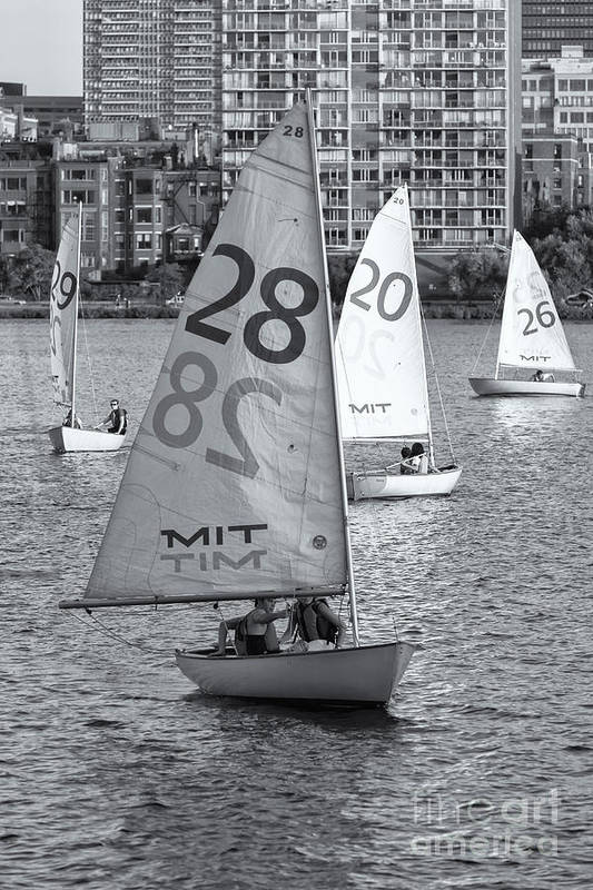 Clarence Holmes Art Print featuring the photograph Sailboats On The Charles River II by Clarence Holmes