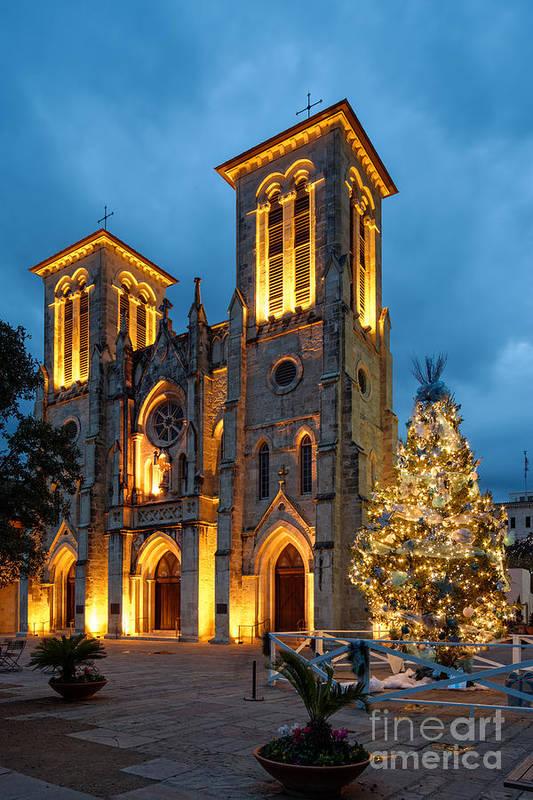 San Art Print featuring the photograph San Fernando Cathedral And Christmas Tree Main Plaza - San Antonio Texas by Silvio Ligutti