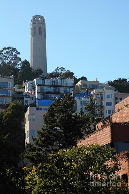 San Francisco Coit Tower Art Print featuring the photograph San Francisco Coit Tower At Levis Plaza 5d26192 by Wingsdomain Art and Photography