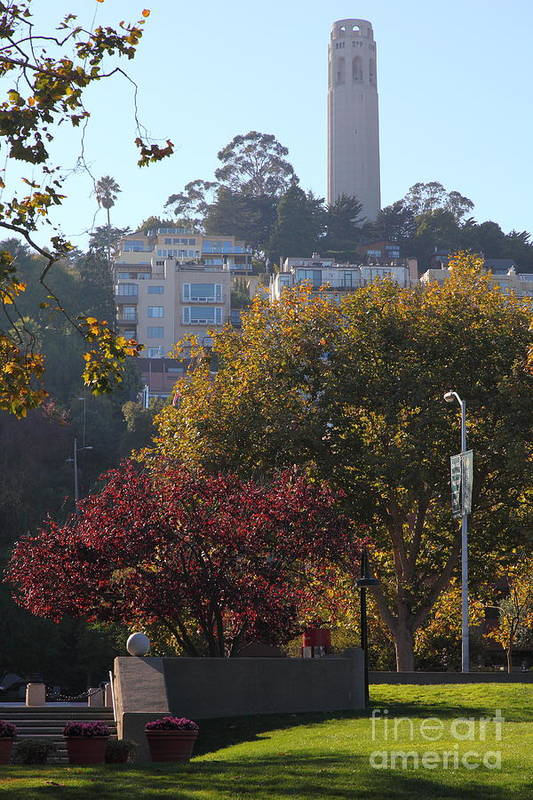 Wingsdomain Art Print featuring the photograph San Francisco Coit Tower At Levis Plaza 5d26216 by Wingsdomain Art and Photography