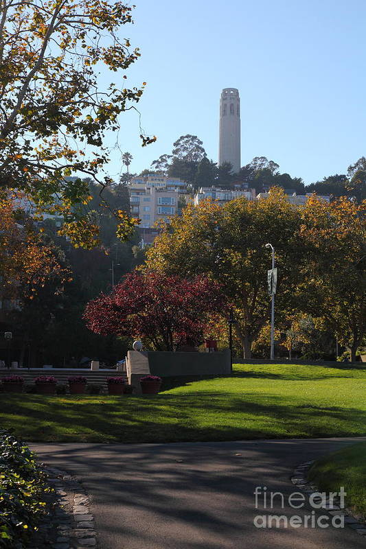 San Francisco Coit Tower Art Print featuring the photograph San Francisco Coit Tower At Levis Plaza 5d26217 by Wingsdomain Art and Photography
