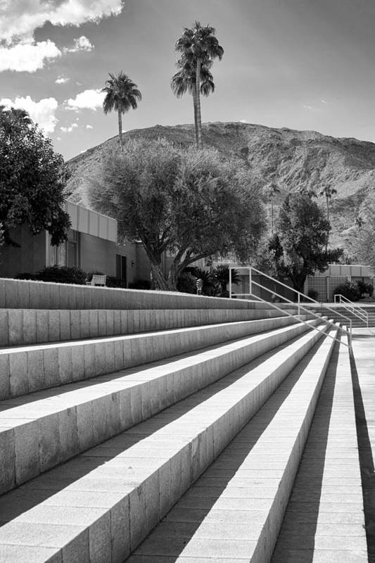 Sandpiper Art Print featuring the photograph Sandpiper Stairs Bw Palm Desert by William Dey