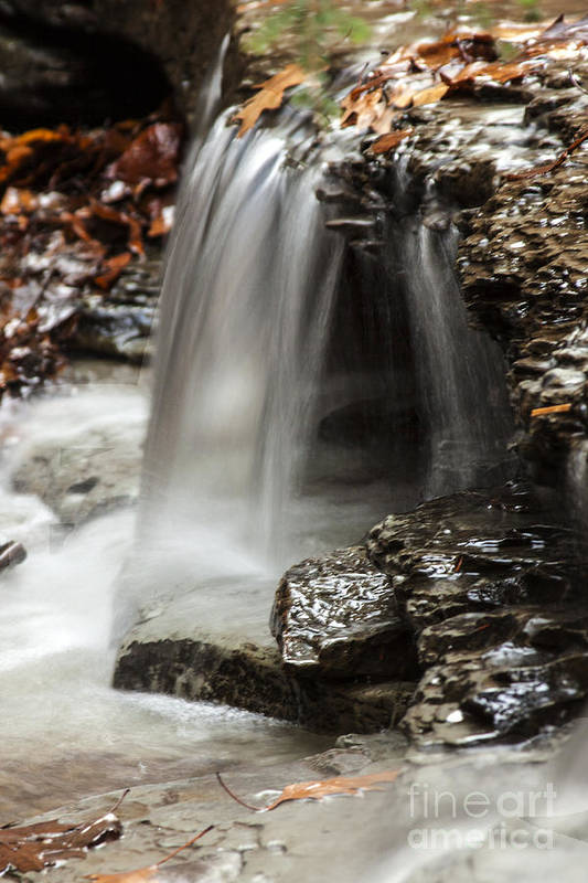 Waterfall Art Print featuring the photograph Shale Creek Waterfall by Darleen Stry