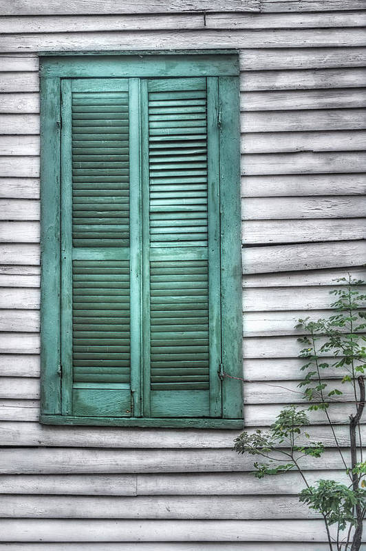 Window Art Print featuring the photograph Simply Green by Brenda Bryant