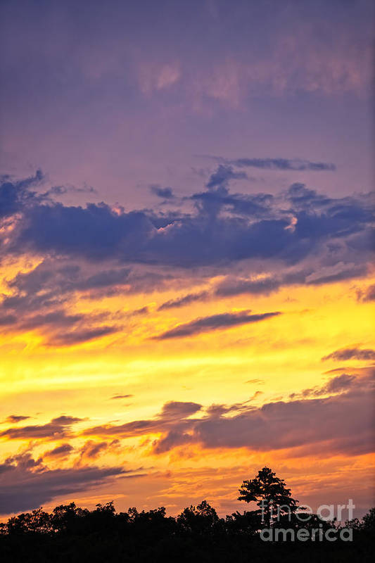 Sunset Art Print featuring the photograph Spectacular Sunset by Elena Elisseeva