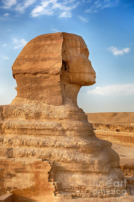 Africa Art Print featuring the photograph Sphinx Profile by Jane Rix