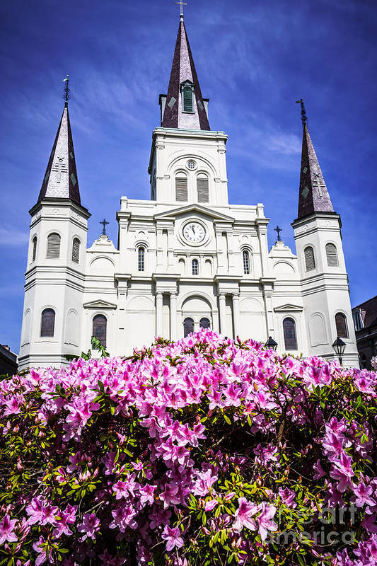 America Art Print featuring the photograph St. Louis Cathedral And Flowers In New Orleans by Paul Velgos