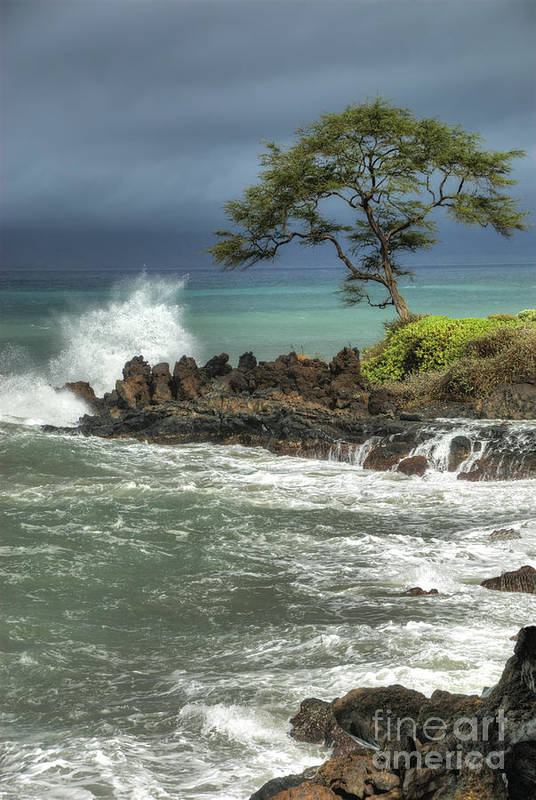 Waterscape Art Print featuring the photograph Stormy Maui Morning by Sandra Bronstein