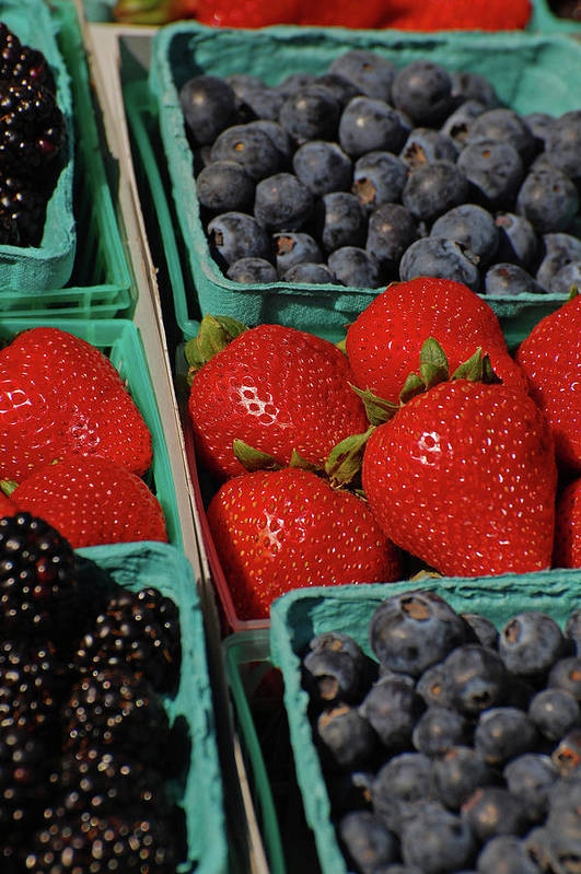 Berries Art Print featuring the photograph Summer Berries by Jean Booth