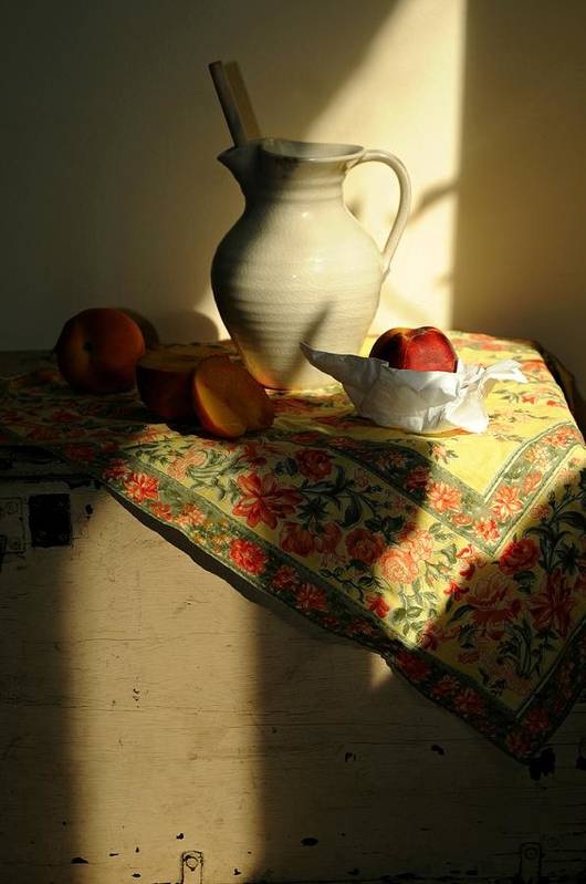 Still Life Print featuring the photograph Sun Shade by Diana Angstadt