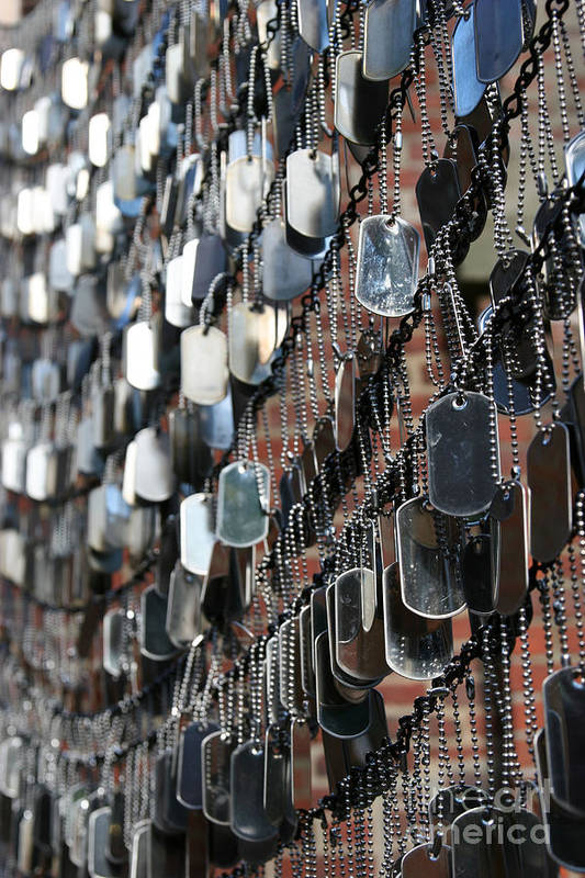 Dog Tag Art Print featuring the photograph Tags by DJ Florek