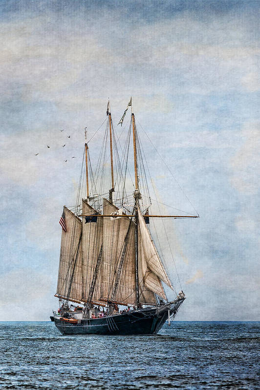 Denis Sullivan Art Print featuring the photograph Tall Ship Denis Sullivan by Dale Kincaid